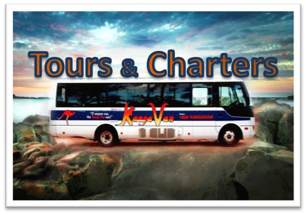 Tours and charters